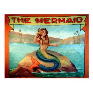 Vintage o cartão da bandeira da mostra do circo da cartão postal