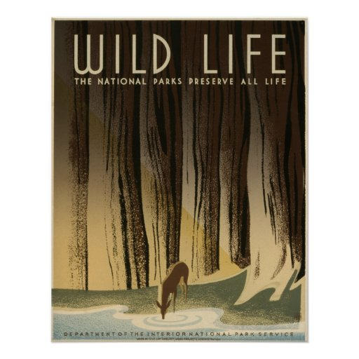 Vintage selvagem da vida National Park Service 194 Pôsteres