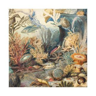 Vintage sob o impressão das canvas do mar  
