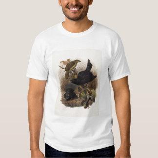 Violaceus de Elliot - de Ptilorhynchus - Tshirts