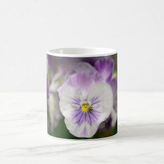 Violas roxas e brancas por Shirley Taylor Caneca De Café