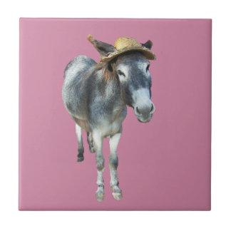 Violeta o asno no chapéu de palha com flores