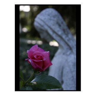 Virgem Maria abençoada & o rosa Cartão Postal