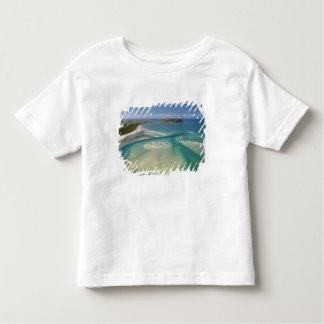 Vista aérea do estuário, da baía de Sawyer, Camiseta