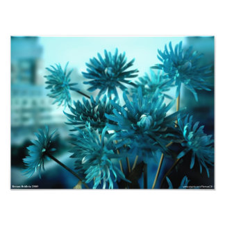 Vista azul fotografia