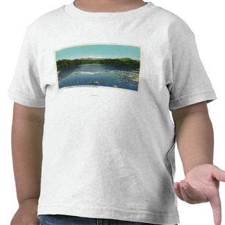 Vista da montagem Washington e o Saco Tshirts