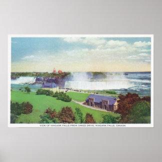 Vista de Niagara Falls da movimentação de Oakes Posters