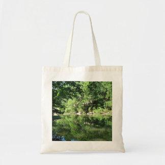 Vista do rio bolsas