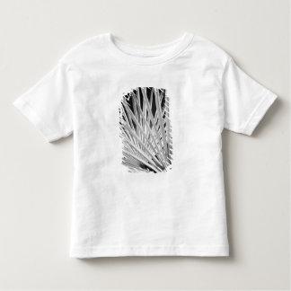 Vista preta & branca das frondas da palmeira camiseta