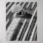Vista preta & branca do celeiro de pedra pequeno impressão