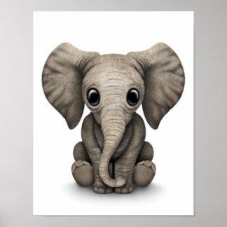 Vitela bonito do elefante do bebê que senta-se par impressão