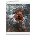 Vizsla_fetching em water.png cartão