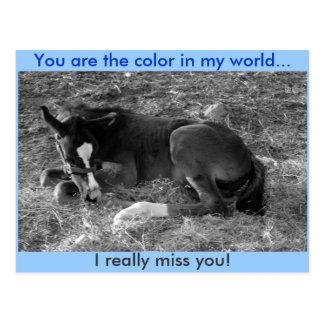 Você é a cor em meu mundo cartão postal