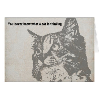 Você nunca sabe que um gato pensa o cartão de