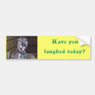 Você tem rido hoje? adesivo para carro