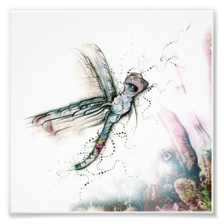 Vôo da libélula foto arte