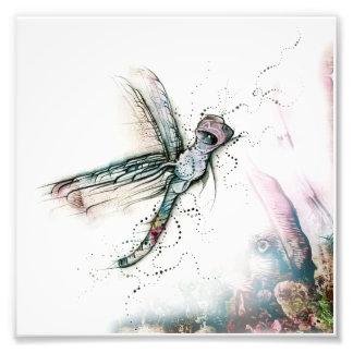Vôo da libélula impressão de foto