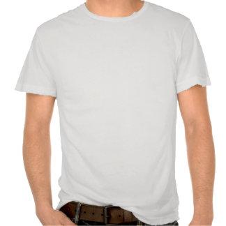 Vôo de um pássaro da cadeia camiseta