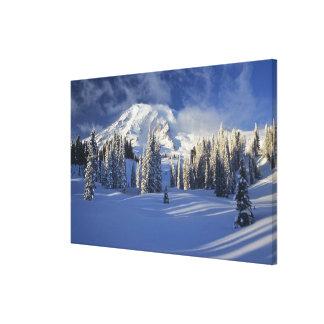 WA, Monte Rainier NP, Monte Rainier e paraíso Impressão De Canvas Esticada