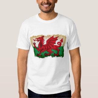 Wales na aflição camiseta