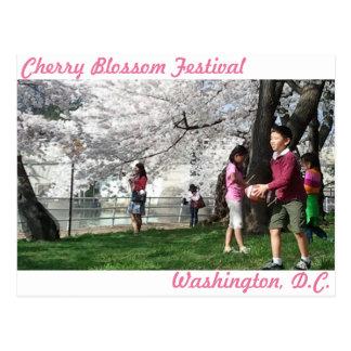 Washington, cartão da flor de cerejeira da C.C.