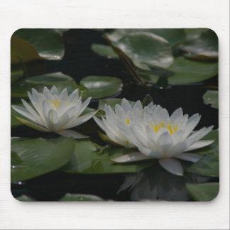 Waterlily branco Mousepad