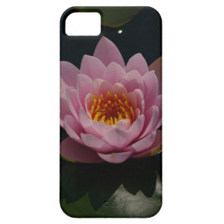 Waterlily cor-de-rosa capa barely there para iPhone 5