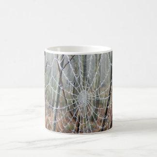 Web da caneca européia da aranha de jardim