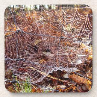 Web da porta copos plástica dura européia da