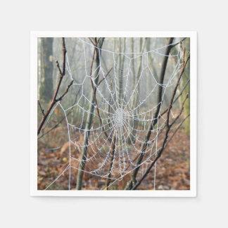 Web de guardanapo de papel europeus de aranha de