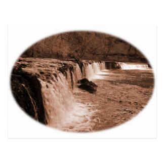 Weir em madeiras de Plymbridge Cartão Postal