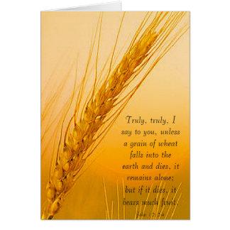 WheatSun Cartão Comemorativo