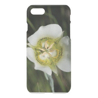 Wildflower branco capa iPhone 7