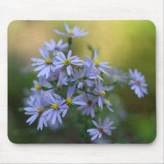 Wildflower floral Mousepad dos ásteres roxos do