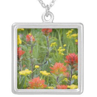 Wildflowers do pincel indiano e do biscuitroot colar com pendente quadrado