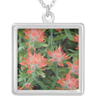 Wildflowers do pincel indiano no muitos colar com pendente quadrado