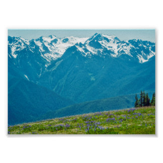 Wildflowers e montanhas poster