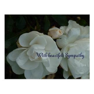 With heartfelt Sympathy - cartão de pêsame