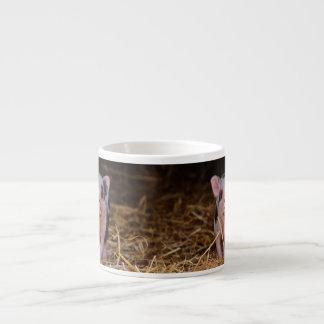Xícara De Espresso mini porco