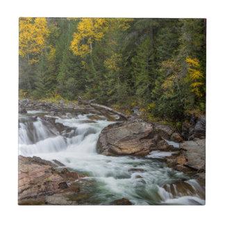 Yaak cai no outono no nacional de Kootenai
