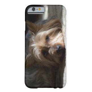 Yorkhire/telefone e capas de ipad Terrier de seda
