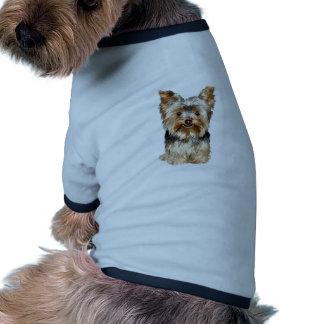 Yorkshire terrier 17 roupa para pets