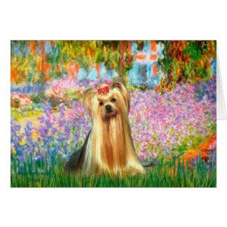 Yorkshire terrier 1 - Jardim Cartão Comemorativo