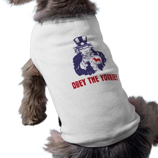 Yorkshire terrier roupas para caes