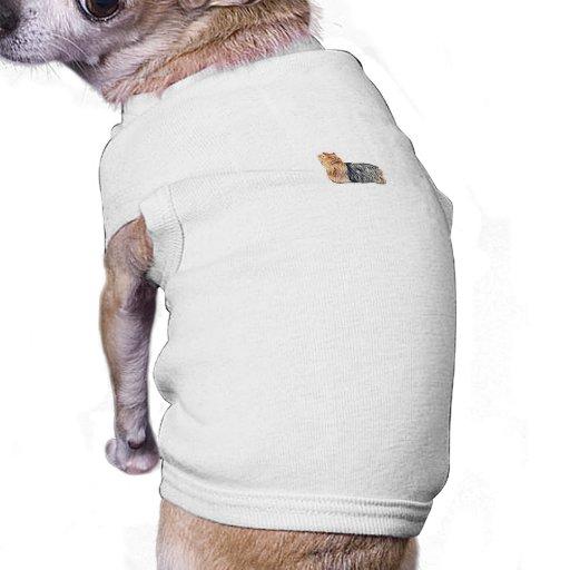Yorkshire terrier roupa para pet