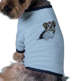 Yorkshire terrier de Biewer Roupas Para Cães