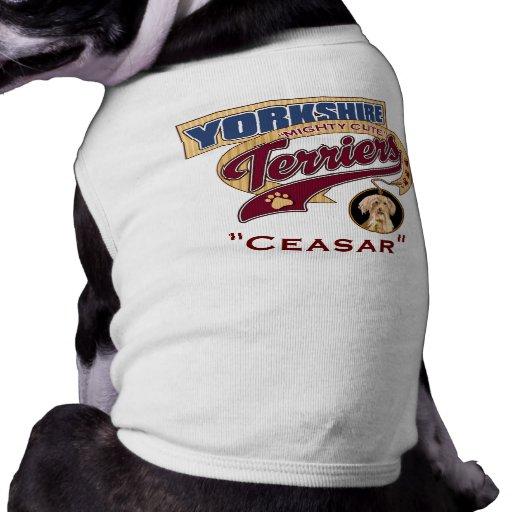 Yorkshires terrier roupas para pet