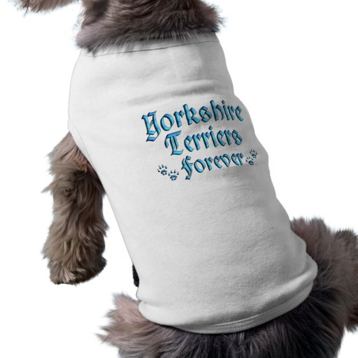 Yorkshires terrier para sempre roupas para pets