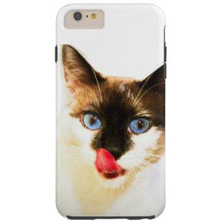 Yum capa de telefone do gatinho