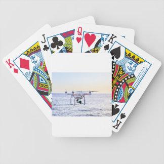 Zangão do vôo na costa acima do mar baralhos para pôquer